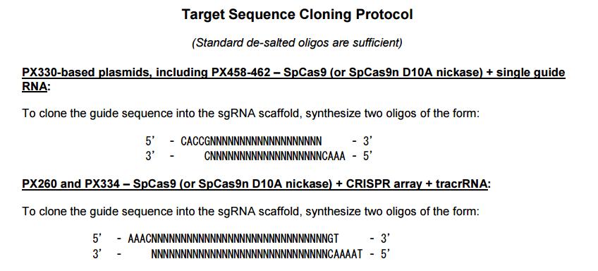pX459-V2.0-plasmid